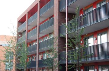 balkonhekken - balkonhek kopen